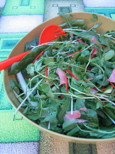 Asian mixed leaf and herb salad