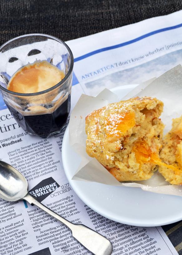 Orange, mixed fruit, chia muffins