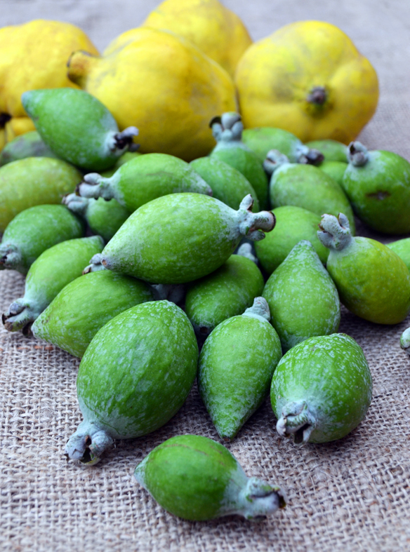 Feijoas and quinces